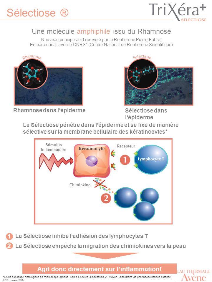 Stimulus inflammatoire