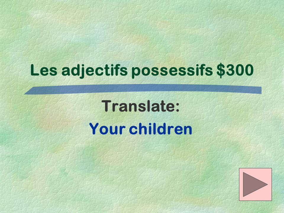 Les adjectifs possessifs $300