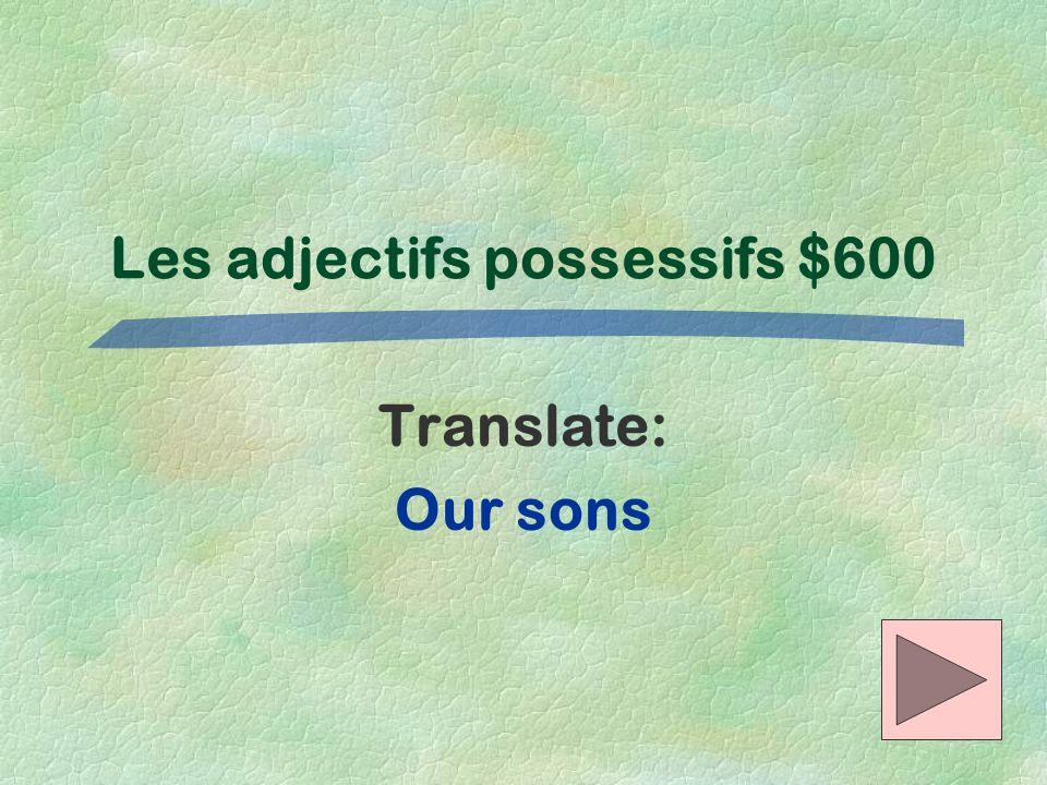 Les adjectifs possessifs $600