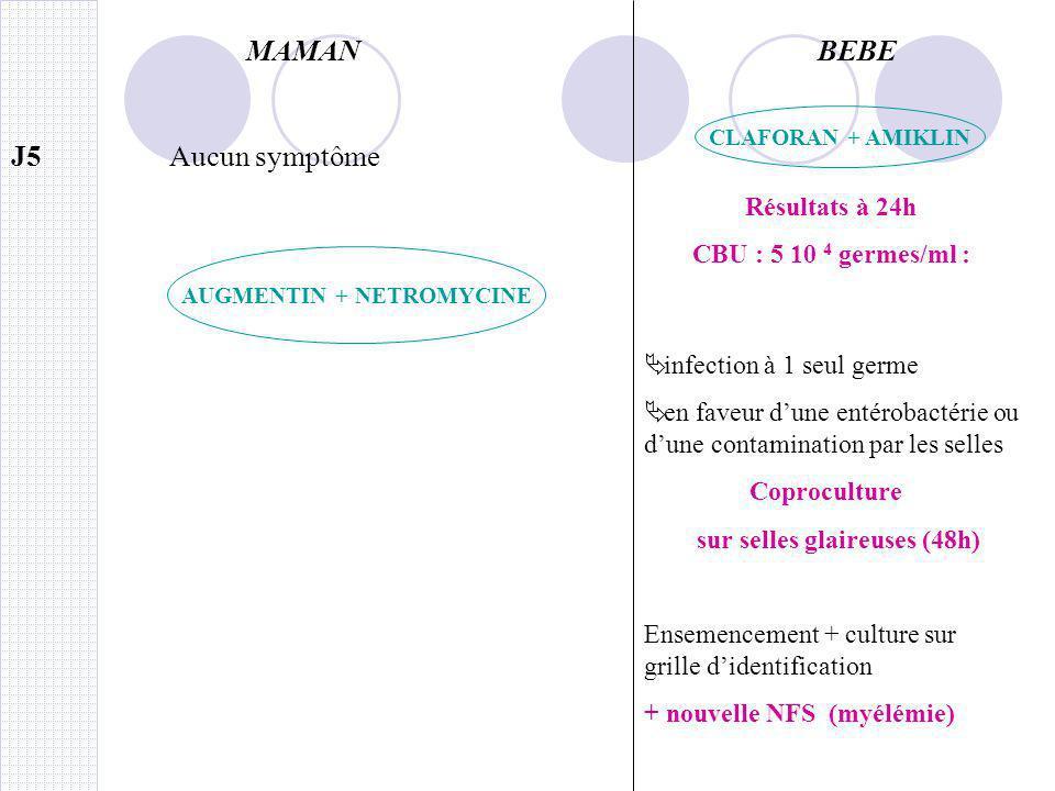 AUGMENTIN + NETROMYCINE