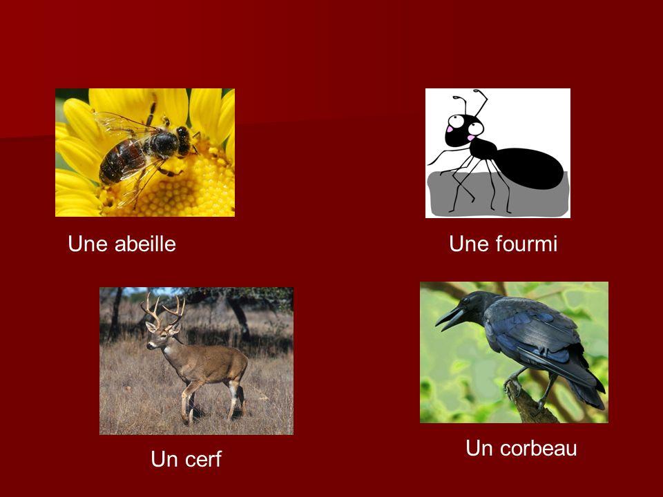 Une abeille Une fourmi Un corbeau Un cerf