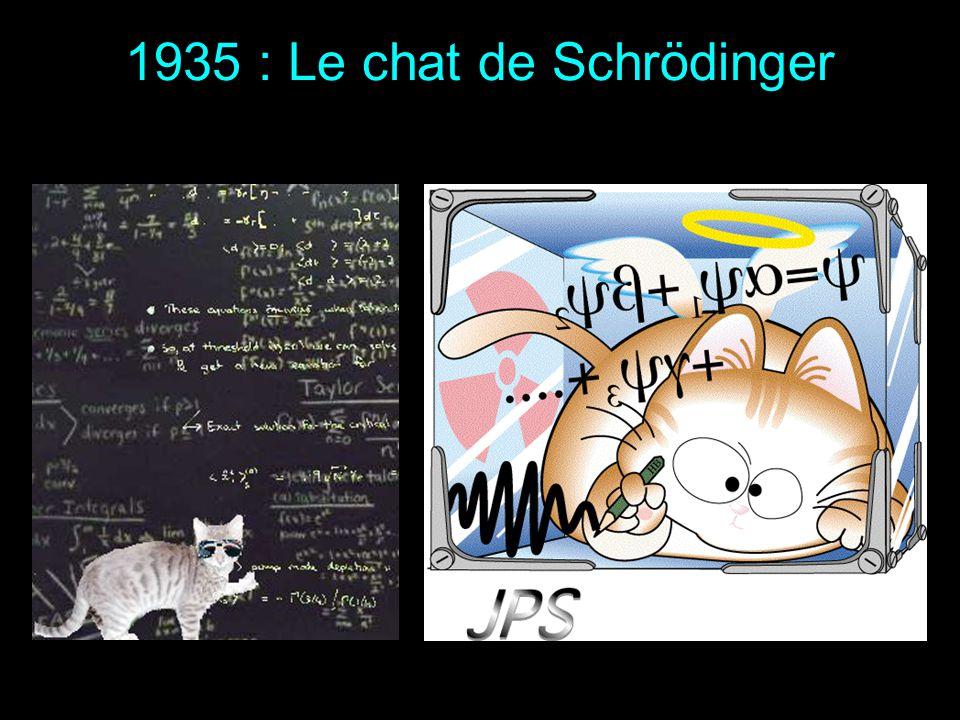 1935 : Le chat de Schrödinger