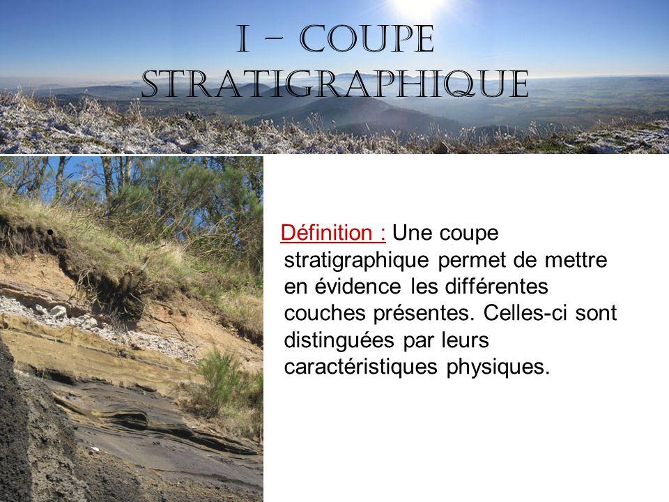 I – Coupe stratigraphique