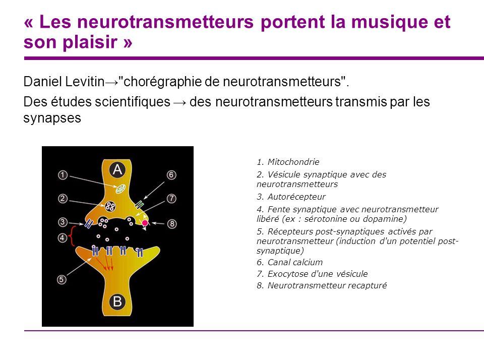 « Les neurotransmetteurs portent la musique et son plaisir »