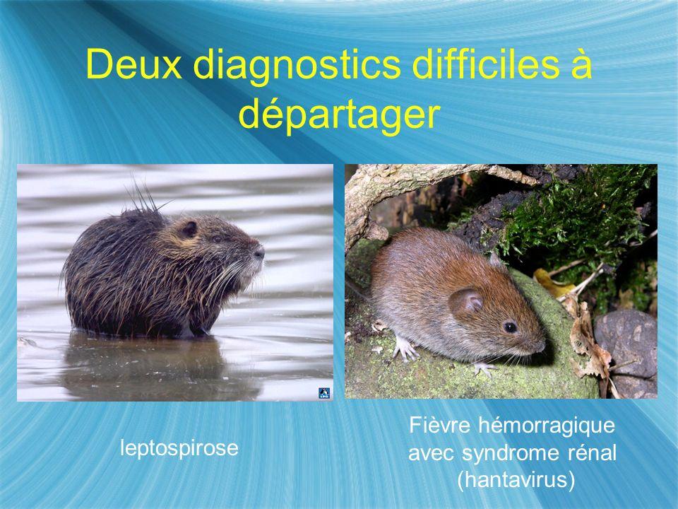 Deux diagnostics difficiles à départager