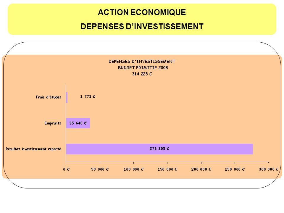DEPENSES D'INVESTISSEMENT
