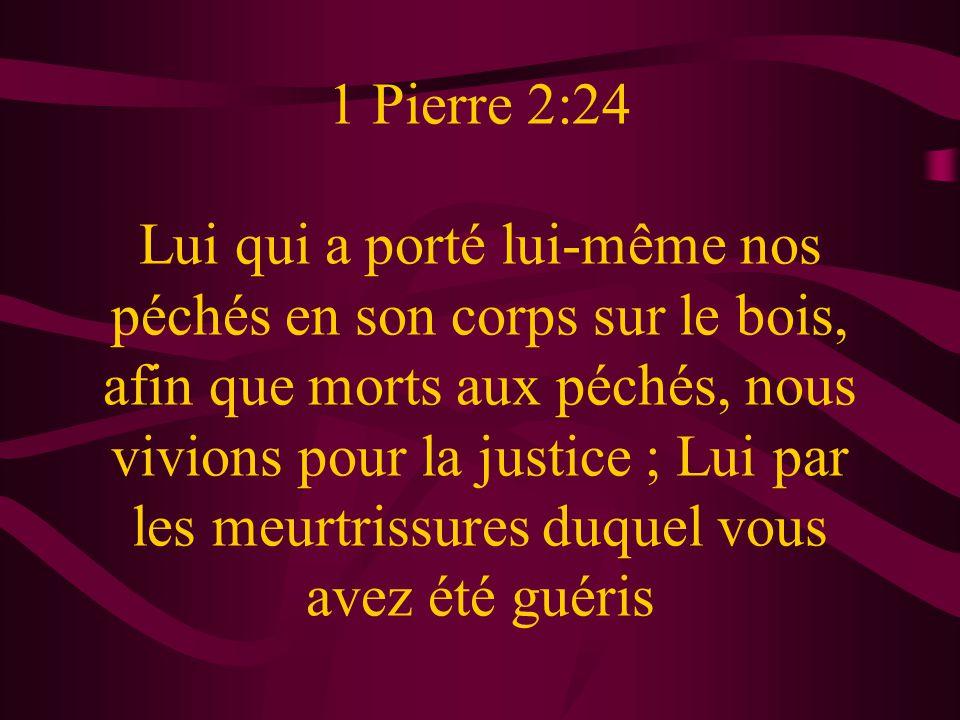 1 Pierre 2:24 Lui qui a porté lui-même nos péchés en son corps sur le bois, afin que morts aux péchés, nous vivions pour la justice ; Lui par les meurtrissures duquel vous avez été guéris