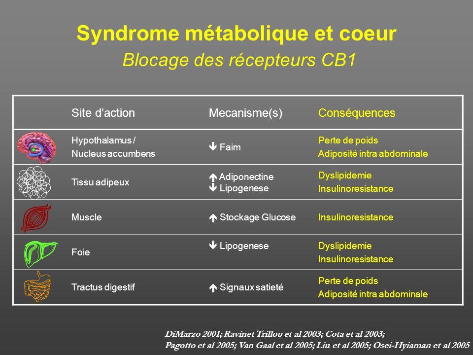 Syndrome métabolique et coeur Blocage des récepteurs CB1
