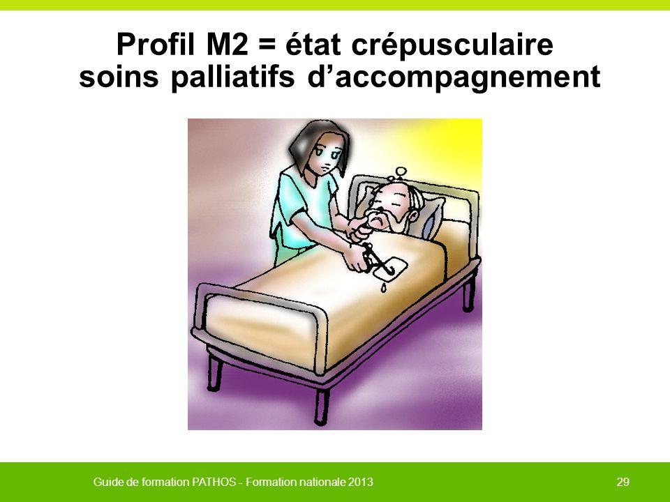 Profil M2 = état crépusculaire soins palliatifs d'accompagnement