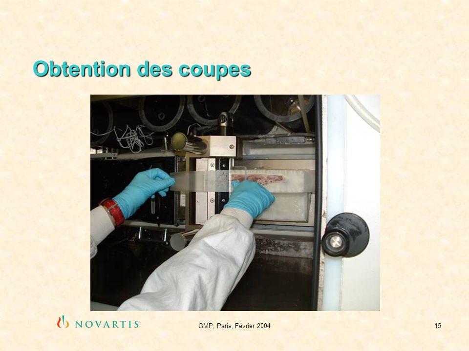 Obtention des coupes GMP, Paris, Février 2004