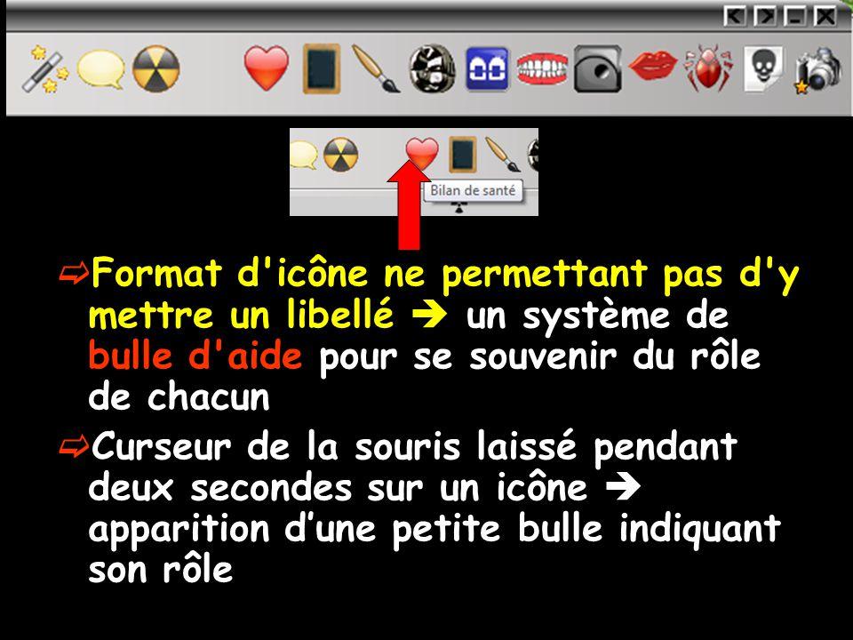 Format d icône ne permettant pas d y mettre un libellé  un système de bulle d aide pour se souvenir du rôle de chacun