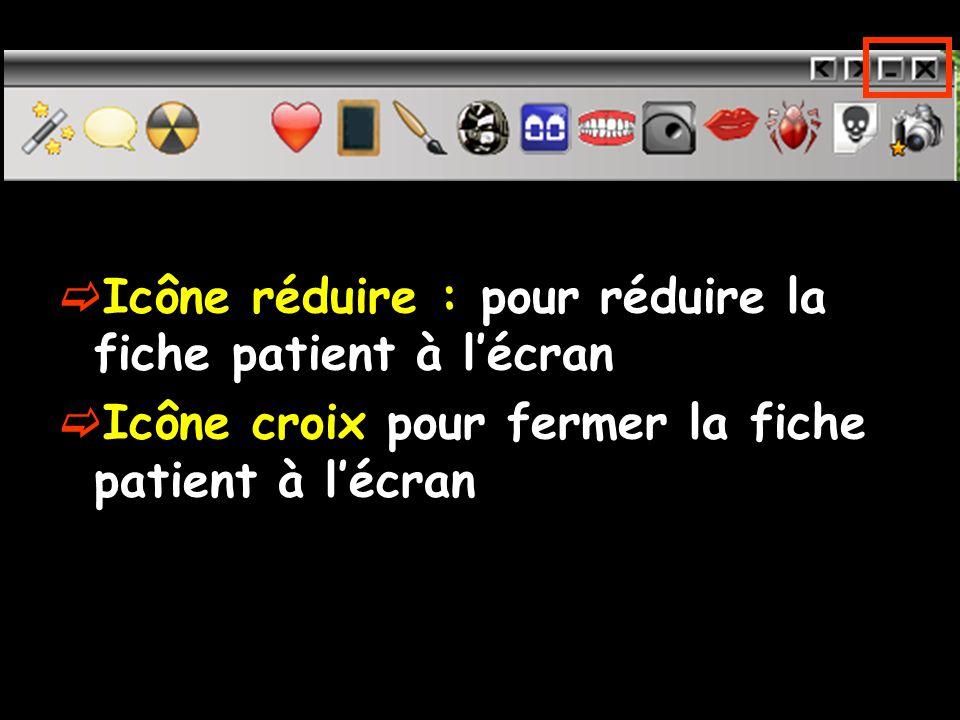 Icône réduire : pour réduire la fiche patient à l'écran