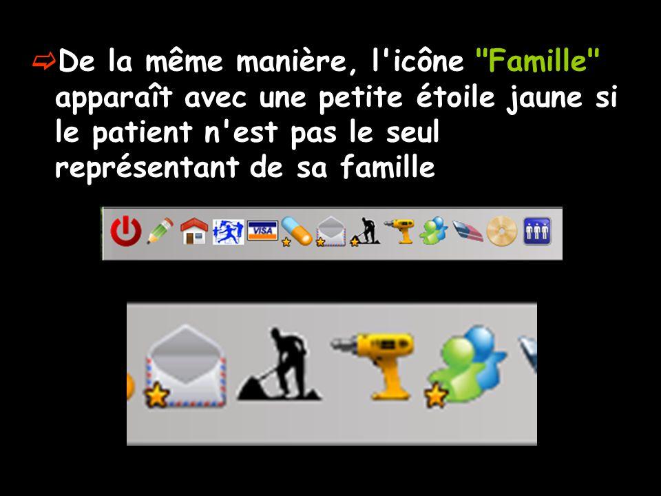 De la même manière, l icône Famille apparaît avec une petite étoile jaune si le patient n est pas le seul représentant de sa famille