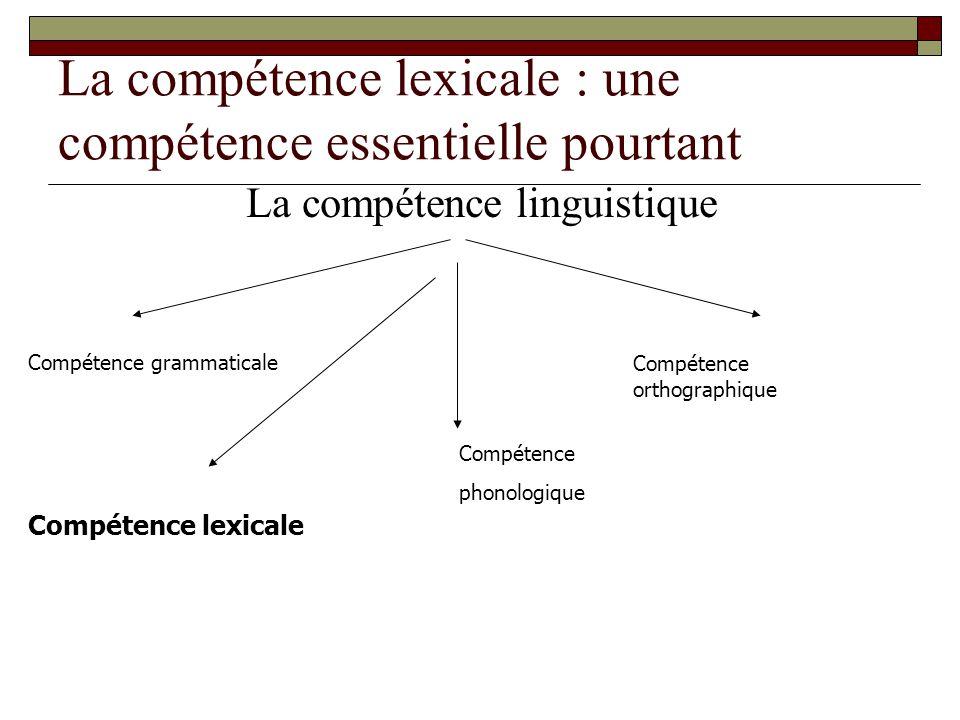 La compétence lexicale : une compétence essentielle pourtant