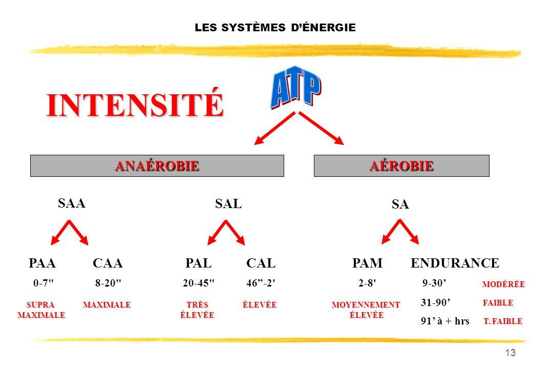LES SYSTÈMES D'ÉNERGIE