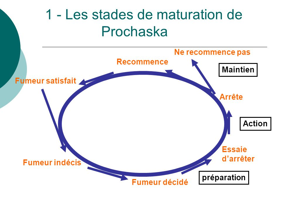 1 - Les stades de maturation de Prochaska