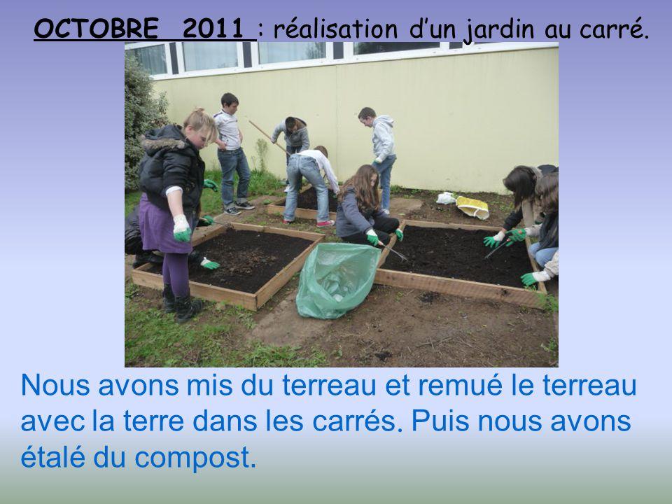 OCTOBRE 2011 : réalisation d'un jardin au carré.