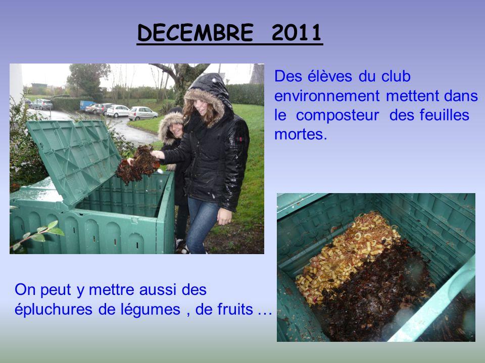 DECEMBRE 2011 Des élèves du club environnement mettent dans