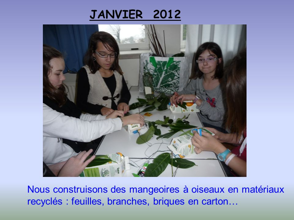 JANVIER 2012 Nous construisons des mangeoires à oiseaux en matériaux recyclés : feuilles, branches, briques en carton…