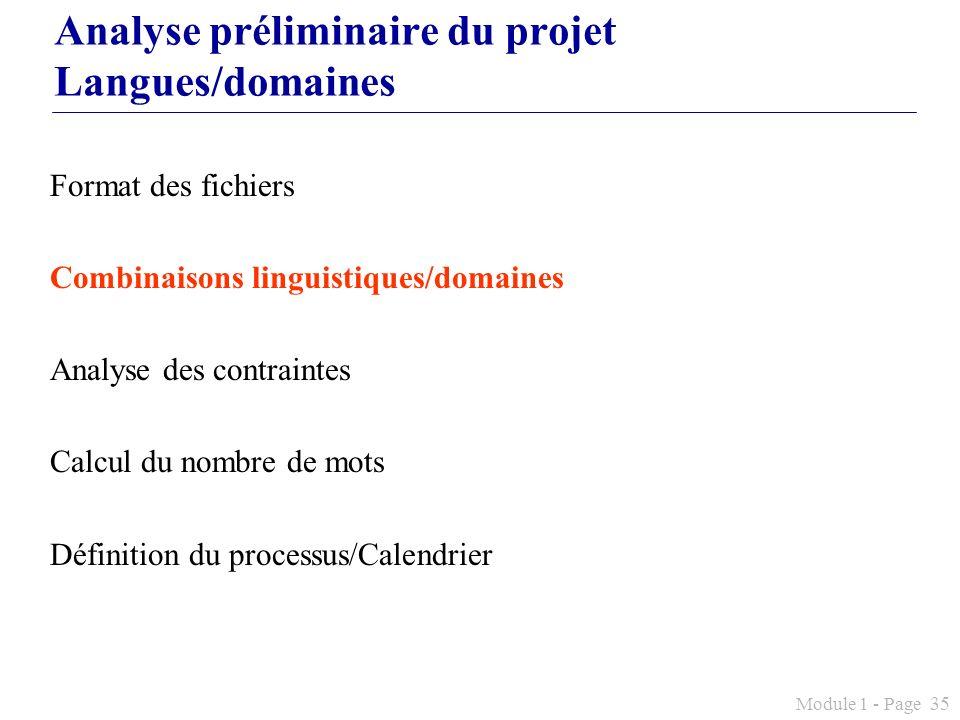 Analyse préliminaire du projet Langues/domaines