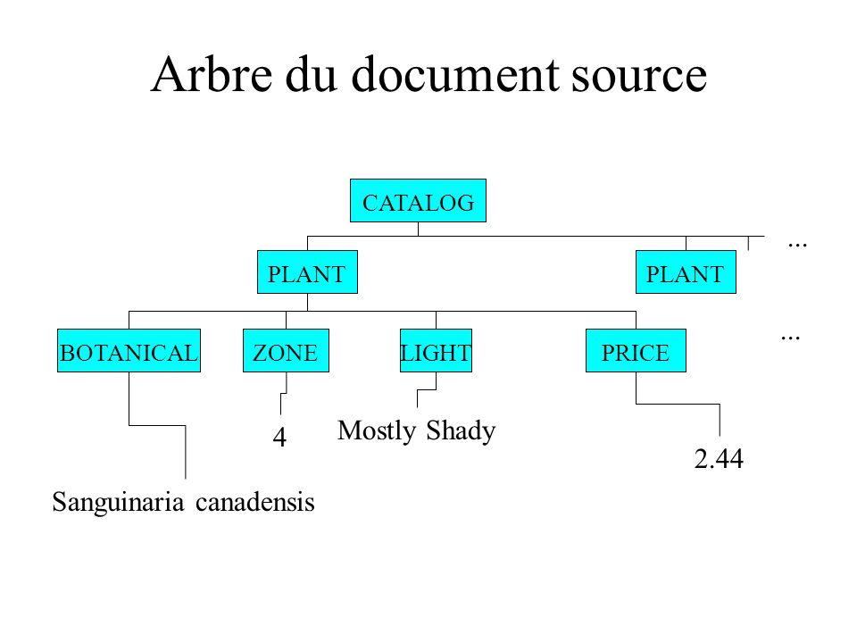 Arbre du document source