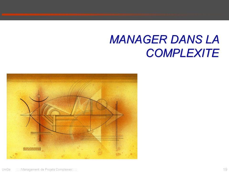 MANAGER DANS LA COMPLEXITE