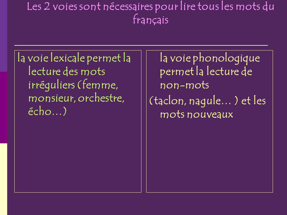 Les 2 voies sont nécessaires pour lire tous les mots du français