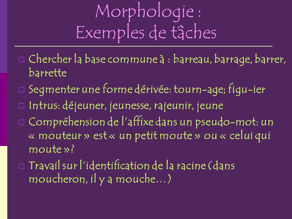Morphologie : Exemples de tâches