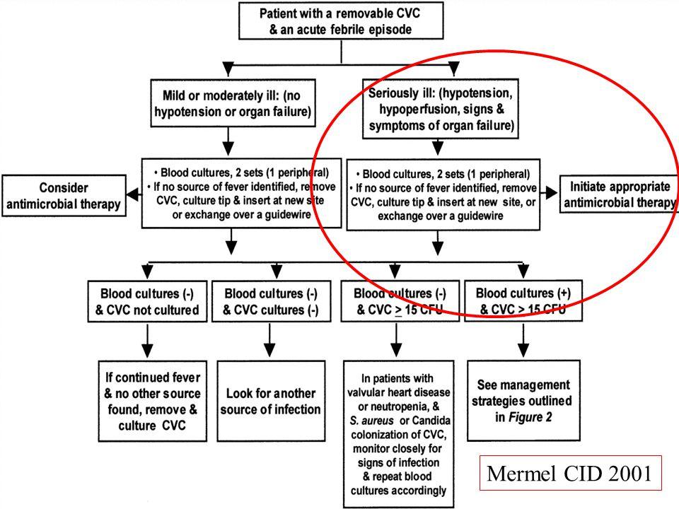 Mermel CID 2001