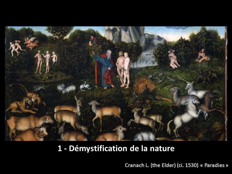1 - Démystification de la nature