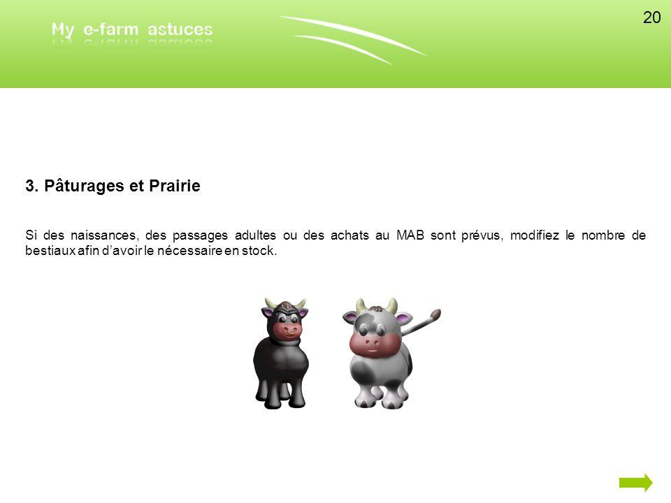 20 3. Pâturages et Prairie.