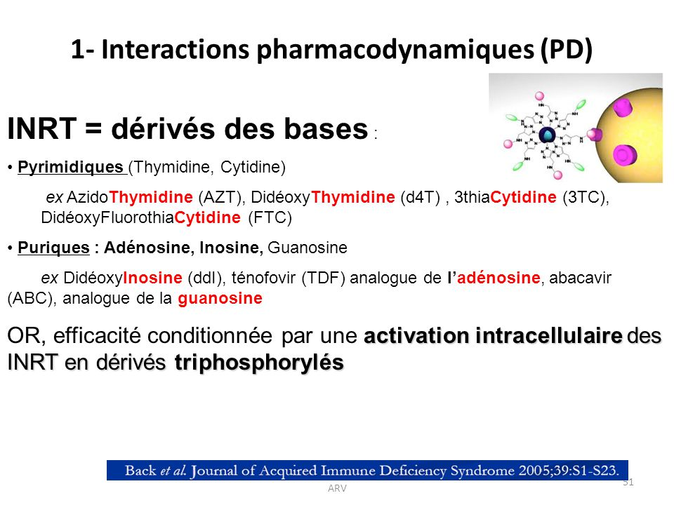 1- Interactions pharmacodynamiques (PD)