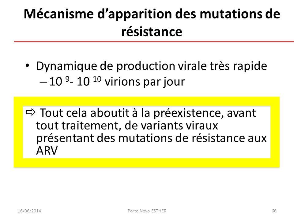 Mécanisme d'apparition des mutations de résistance