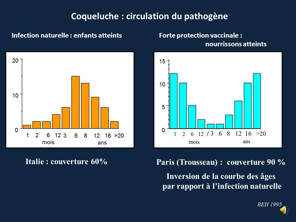 Coqueluche : circulation du pathogène