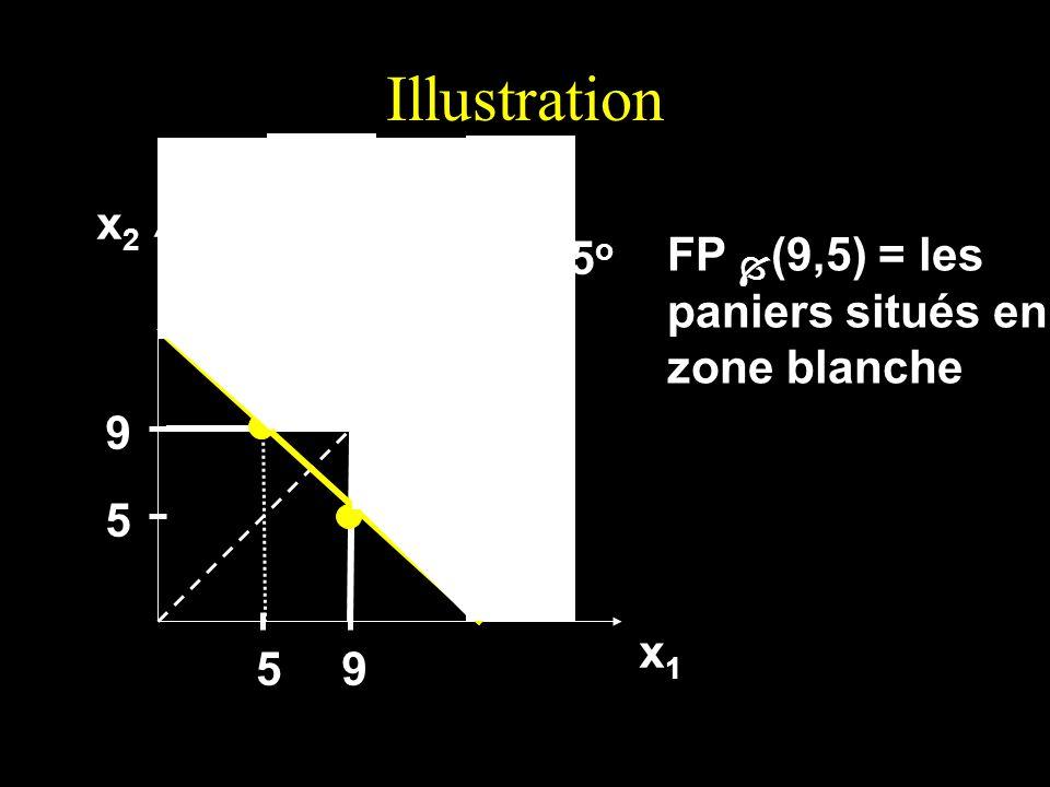 Illustration x2 45o FP (9,5) = les paniers situés en zone blanche 9 5