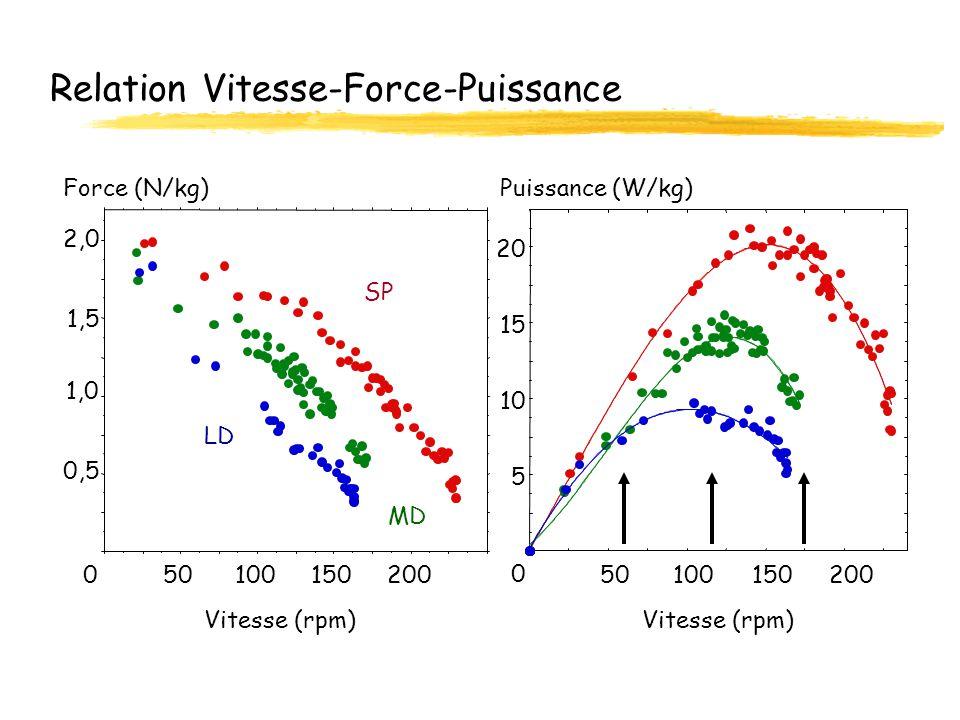 Relation Vitesse-Force-Puissance