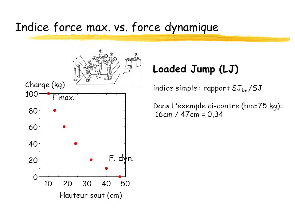 Indice force max. vs. force dynamique