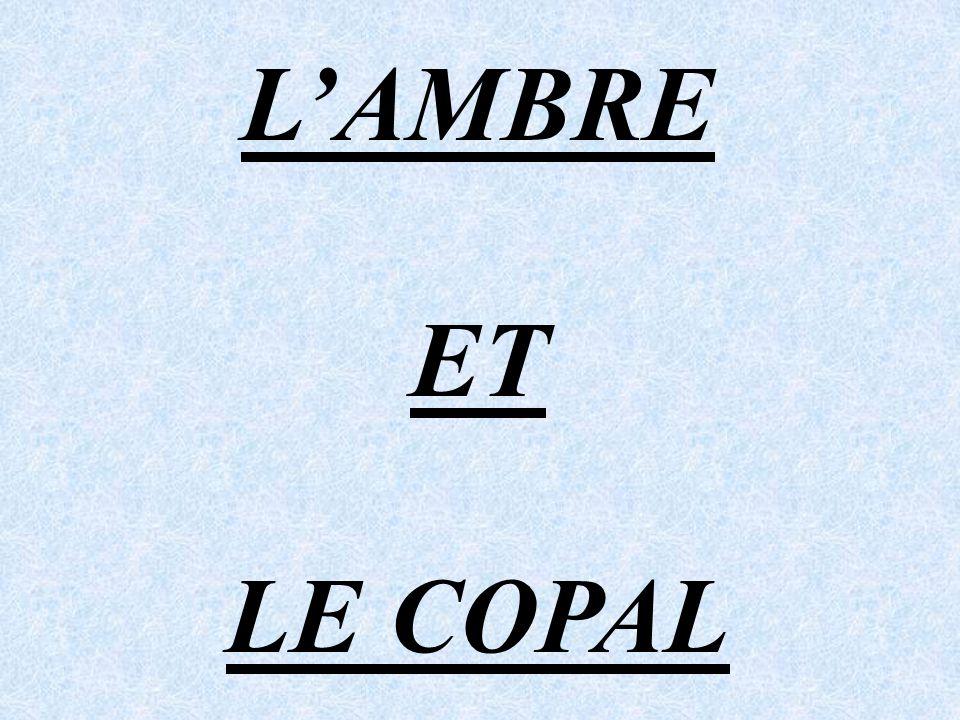 L'AMBRE ET LE COPAL