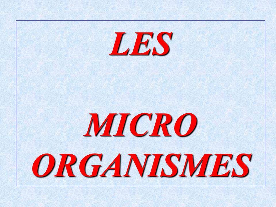 LES MICRO ORGANISMES