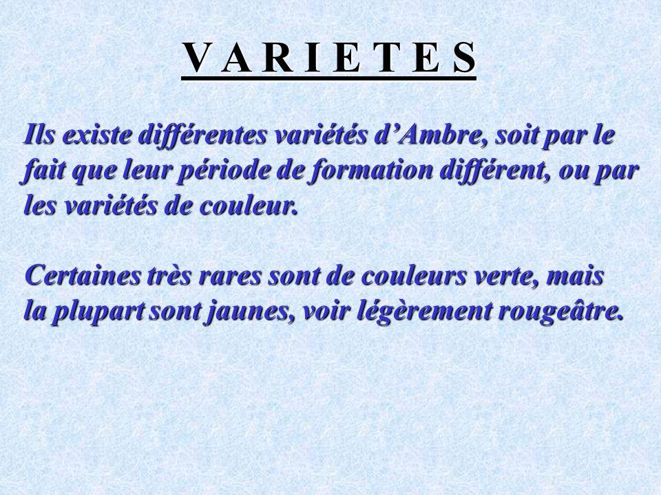 V A R I E T E S Ils existe différentes variétés d'Ambre, soit par le