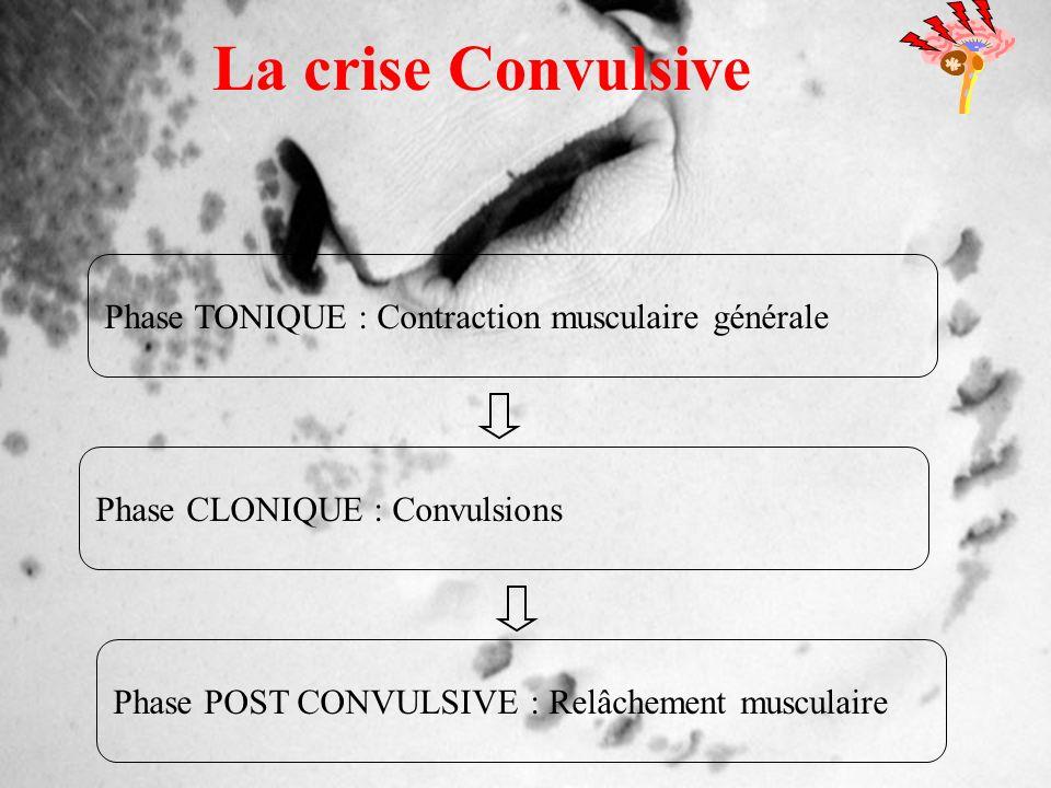 La crise Convulsive Phase TONIQUE : Contraction musculaire générale
