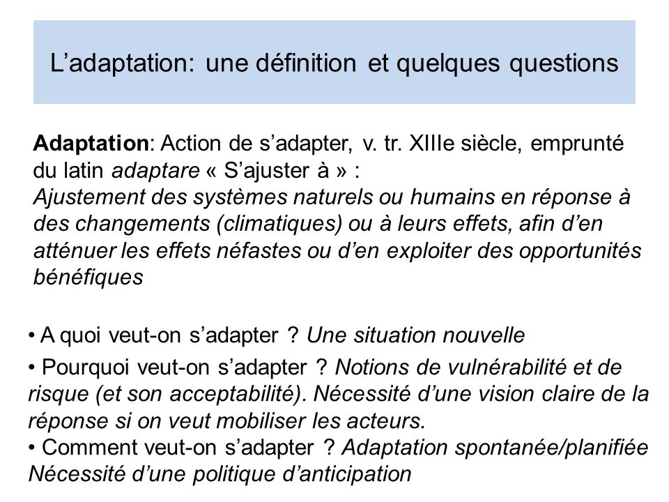 L'adaptation: une définition et quelques questions