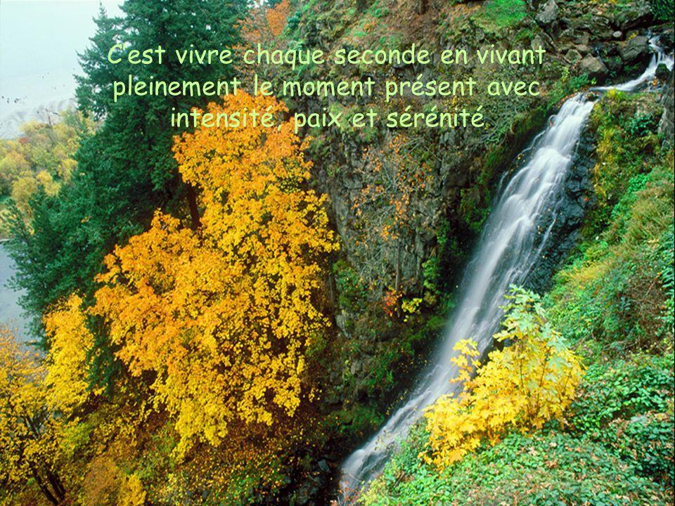 C'est vivre chaque seconde en vivant pleinement le moment présent avec intensité, paix et sérénité