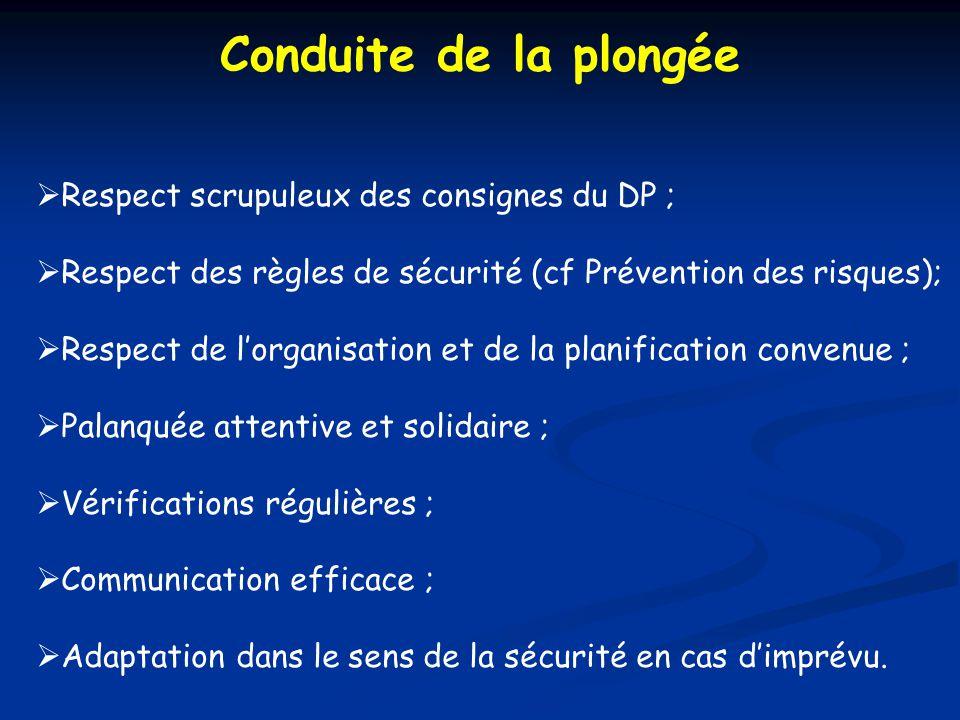 Conduite de la plongée Respect scrupuleux des consignes du DP ;