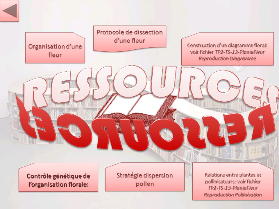 RESSOURCES RESSOURCES