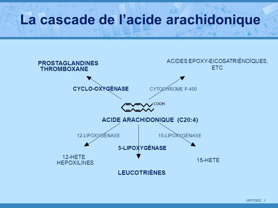 ACIDES EPOXY-EICOSATRIÈNOÏQUES,
