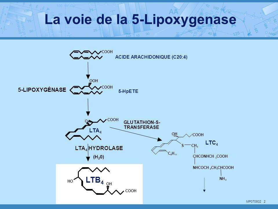 La voie de la 5-Lipoxygenase