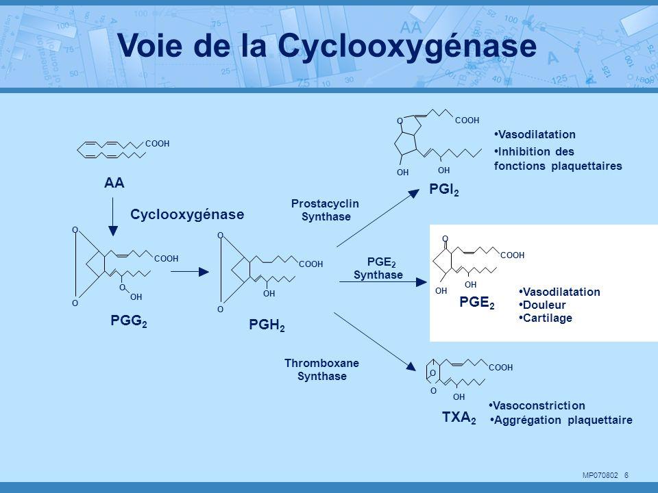 Voie de la Cyclooxygénase
