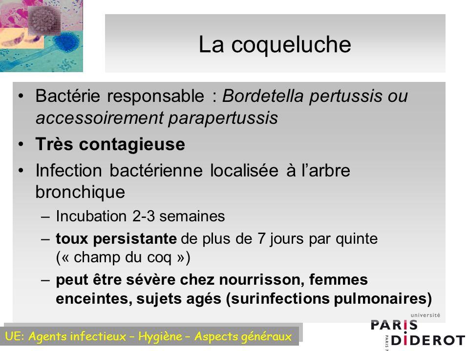 La coqueluche Bactérie responsable : Bordetella pertussis ou accessoirement parapertussis. Très contagieuse.
