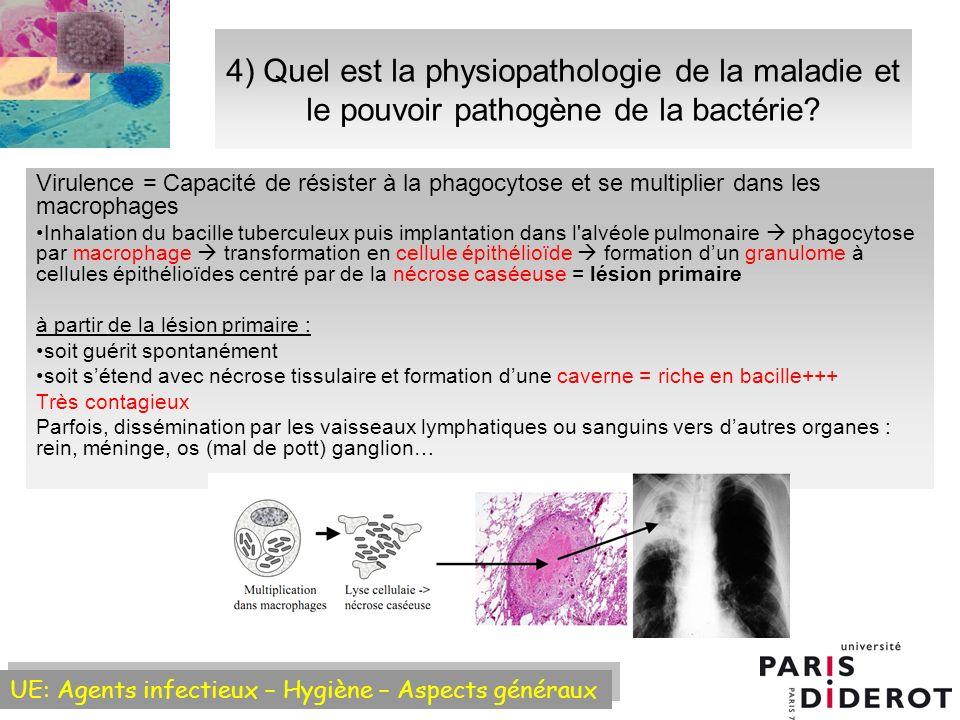 4) Quel est la physiopathologie de la maladie et le pouvoir pathogène de la bactérie
